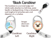 Black Male Badge Reel, Personalized Retractable ID Holder, African American, 8 Scrub Colors, 6 Characters, Doctor Nurse RN CNA Mylar N1077